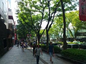 表参道通り2013-08-14 14.54.57
